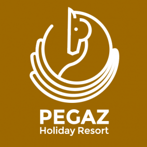 Hotel Pegaz logo