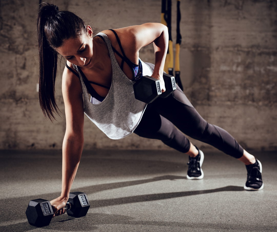 Fitness - Slowelness ponuda